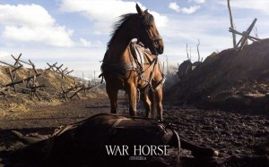 War-Horse-movie-900x562
