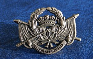 1919-2019 Peace Day Centenary Badge